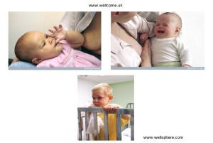 tre_barn